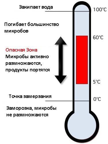 Температурные зоны роста микробов