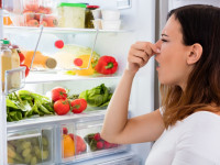 ХХ способов, как избавиться от запаха в холодильнике в домашних условиях (вместо ХХ указать число описанных способов)