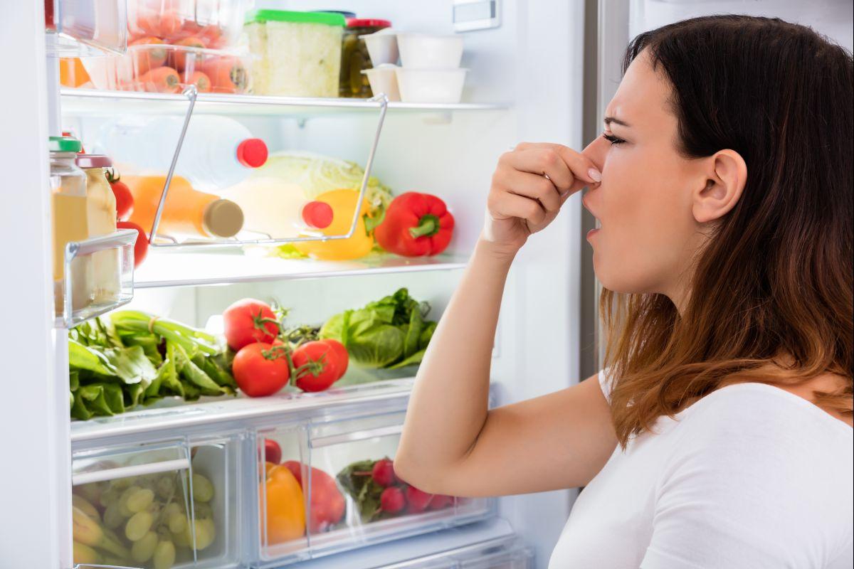 убрать неприятный запах в холодильнике