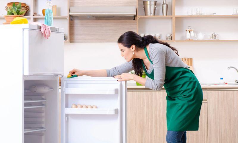 Как правильно включить холодильник после разморозки