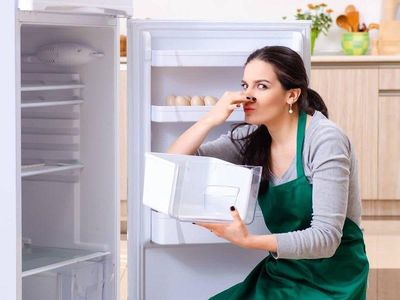 Запах в холодильнике: причины и устранение